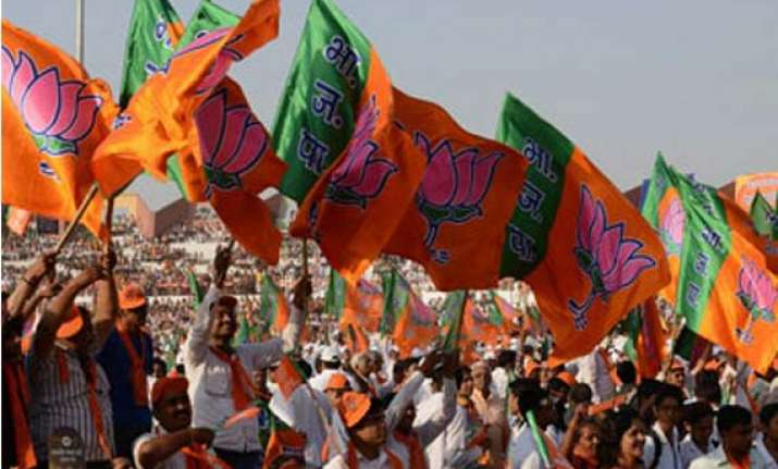 delhi bjp to gear up for next phase of campaigning