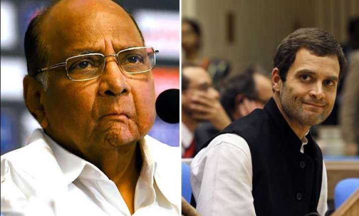 i can t work with rahul gandhi sharad pawar