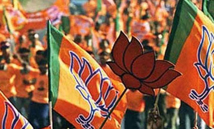 bjp to get majority in delhi elections opinion poll