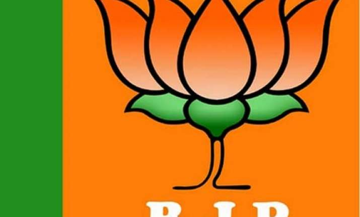 j k polls bjp to tap social media to reach out to voters