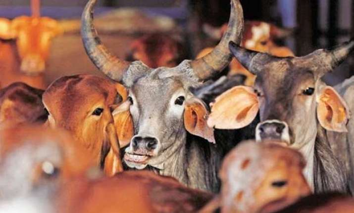 beef row vhp dares the dissenting awardees to eat pork in