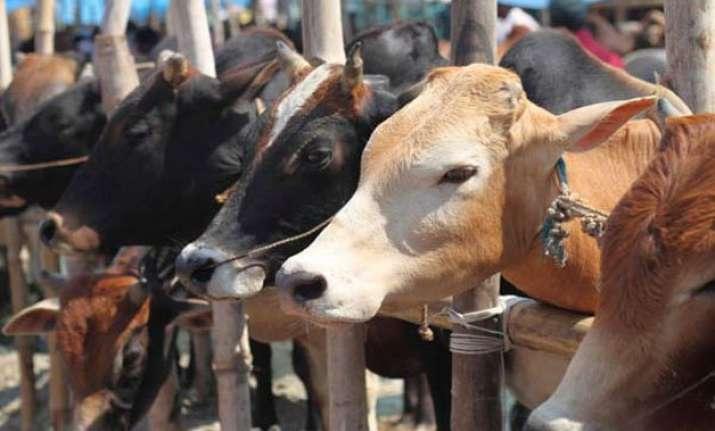 jd u calls for anti cow slaughter legislation
