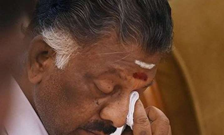 stay calm if you love jayalalithaa says tn chief minister