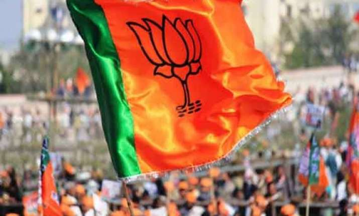 peaceful jk polls due to election commission and army bjp