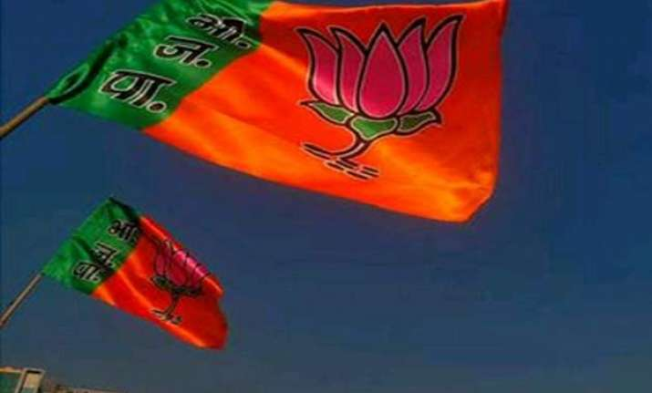 delhi polls bjp union ministers mps given charge of