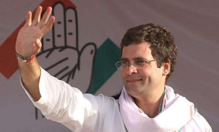 rahul gandhi to address 2 up rallies on oct 30