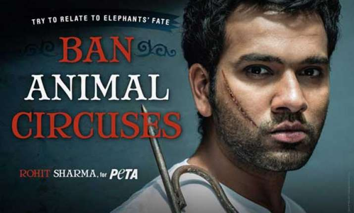 rohit stands up against treatment to circus tuskers