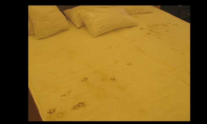 rooms are still unlivable botswana chef de mission