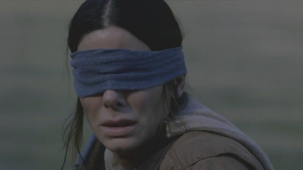 Bizarre Bird Box challenge injures many, Netflix urges