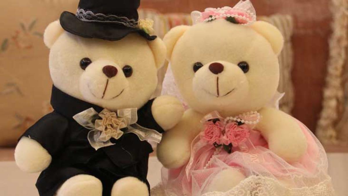 teddy day6 1581256086