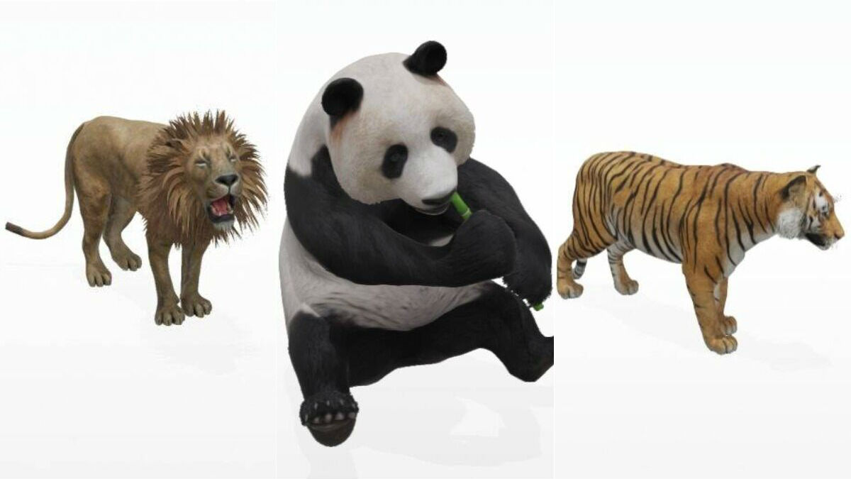 Google 3D Animals not showing up? Here's what you can do to fix it ...