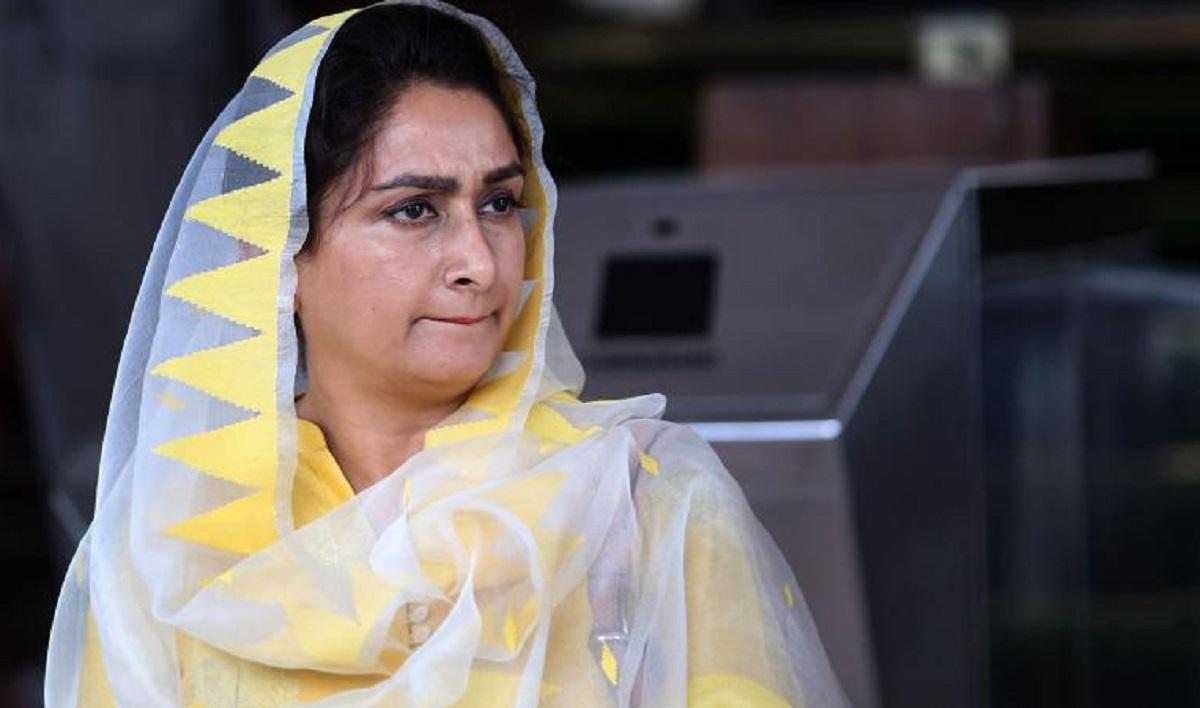 Harsimrat Kaur Badal hospitalised SAD leader admitted to PGI Chandigarh COVID19 negative   India News – India TV