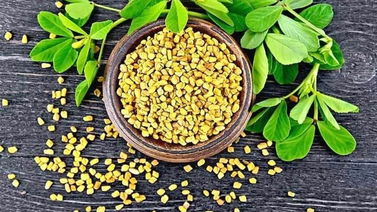 Methi Dana for diabetes | Know health benefits of fenugreek seeds to  control blood-sugar level | Methi News – India TV