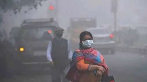 Food that helps build resistance against air pollution
