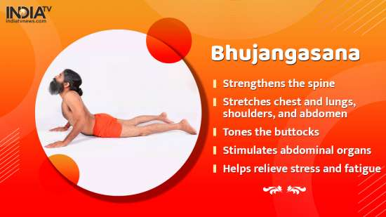 India Tv - 10 Yoga asanas and their benefits