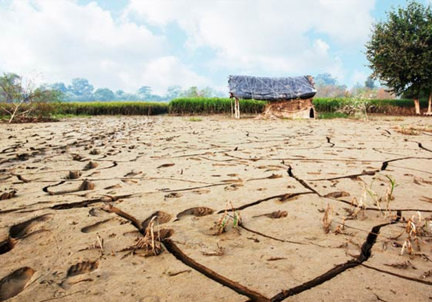 drought-hit states