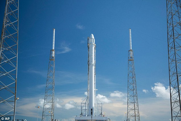 India Tv - The Falcon 9 was in position at its Florida launch pad from Saturday