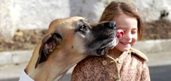 India Tv - Dog licking peoples faces has been proved to be dangerous