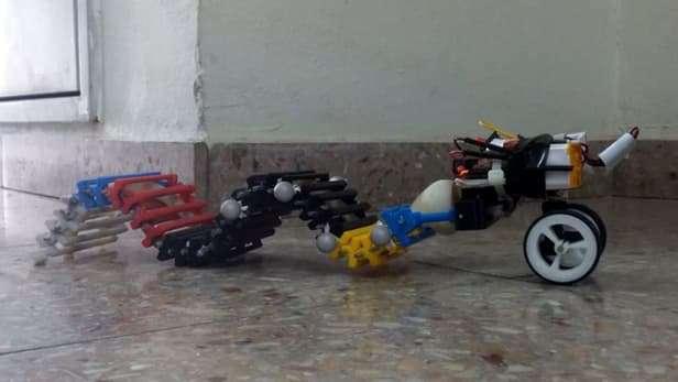 Single-motor robot