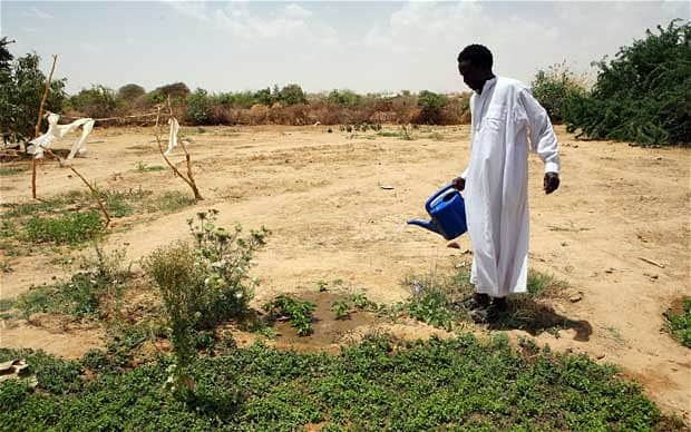 New method to convert deserts into fertile land