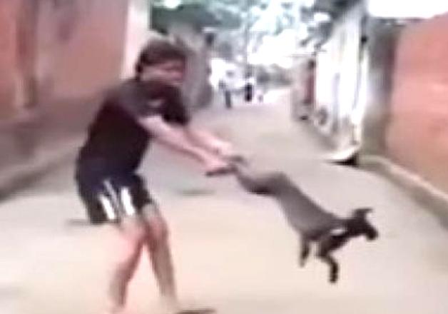 Video of man spinning dog goes viral on social media