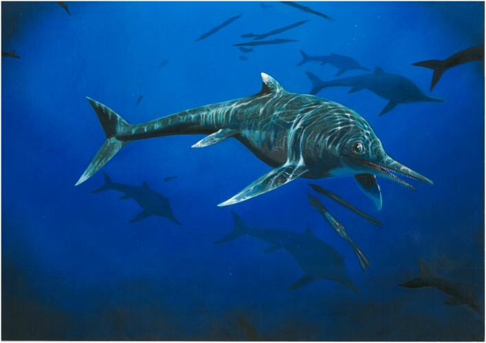 Scientists discover 200 million- year-old reptile species