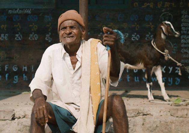 1st BRICS Film Festival: 'Thithi' wins Best Film honour in