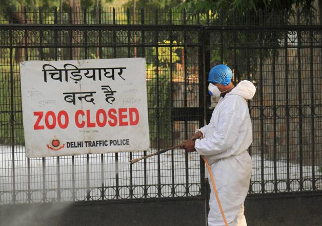 A health department official at Delhi Zoo.