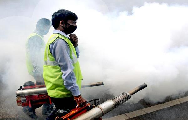 Dengue, chikungunya cases on decline in Delhi