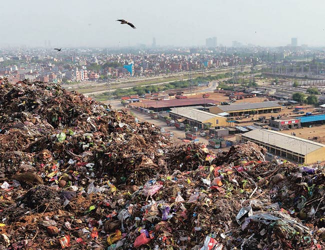 NGT bans open burning of waste