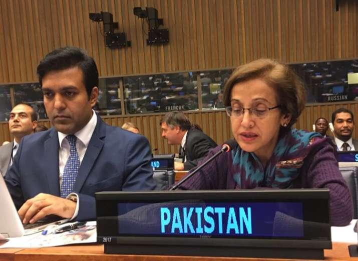 Tehmina Janjua becomes Pakistan's first woman Foreign