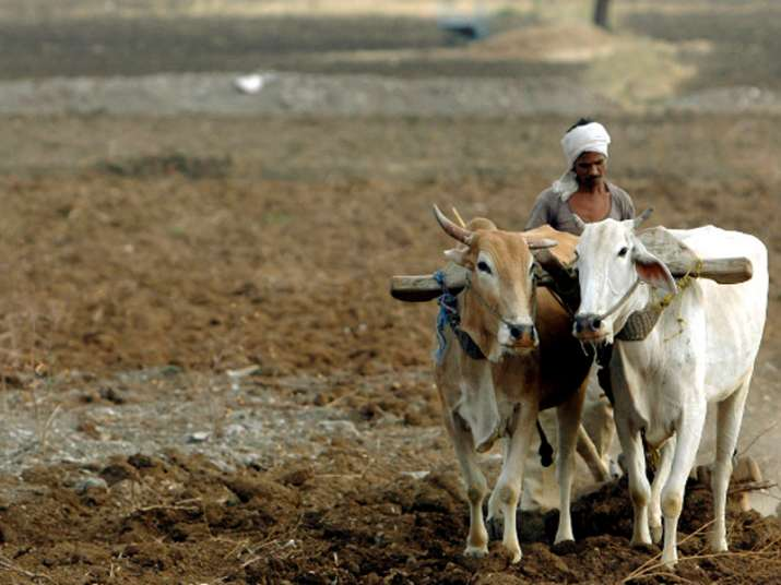 389 farmers committed suicide in Maharashtra this year: