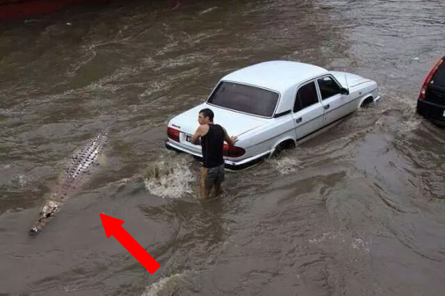 India Tv - hilarious pictures of folks failing at their jobs will make you feel better
