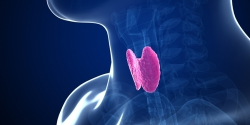 India Tv - sub-clinical hypothyroidism is the most common thyroid disorder in india