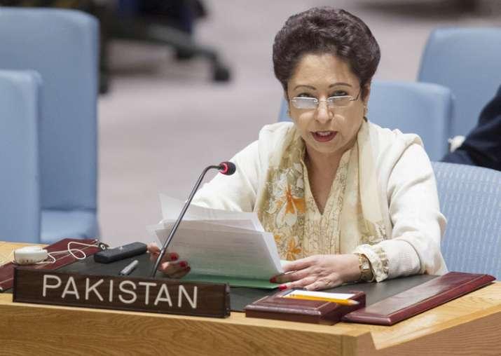 File pic - Pakistan's Ambassador to the UN Maleeha Lodhi