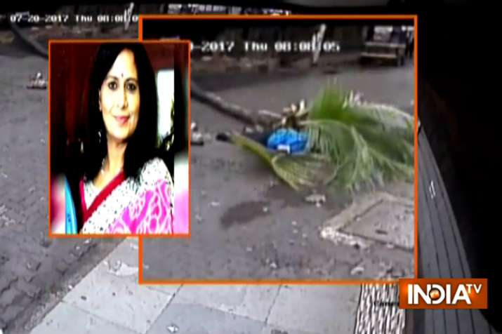 Former Doordarshan anchor crushed to death as tree topples