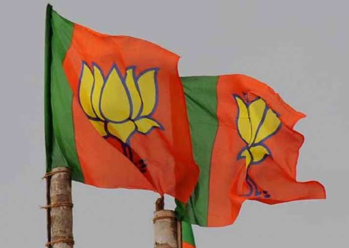 BJP eyes win on over 200 seats in 2018 MP Assembly polls