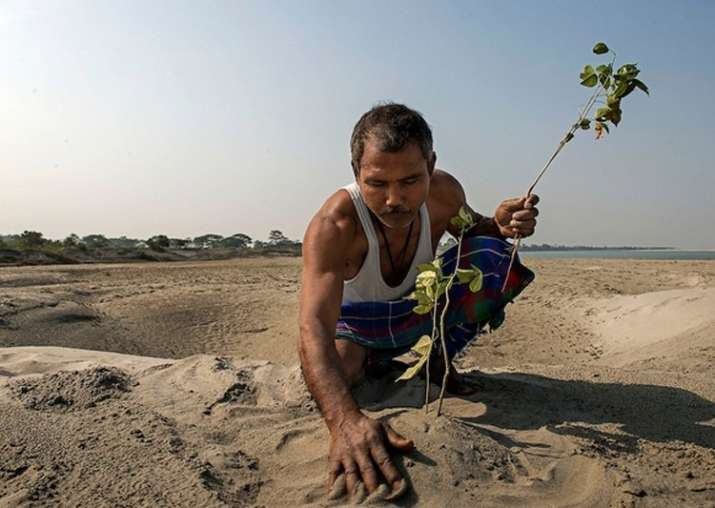 Indian Man Single-Handedly Plants Entire Forest