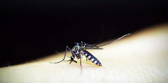 southeast asia, super malaria