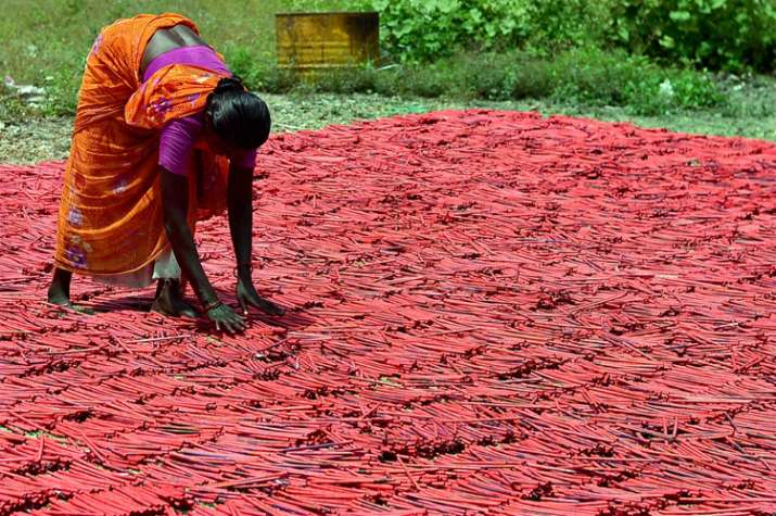 India Tv - A woman employee drying up crackers at a factory in Sivakasi district in Tamil Nadu.