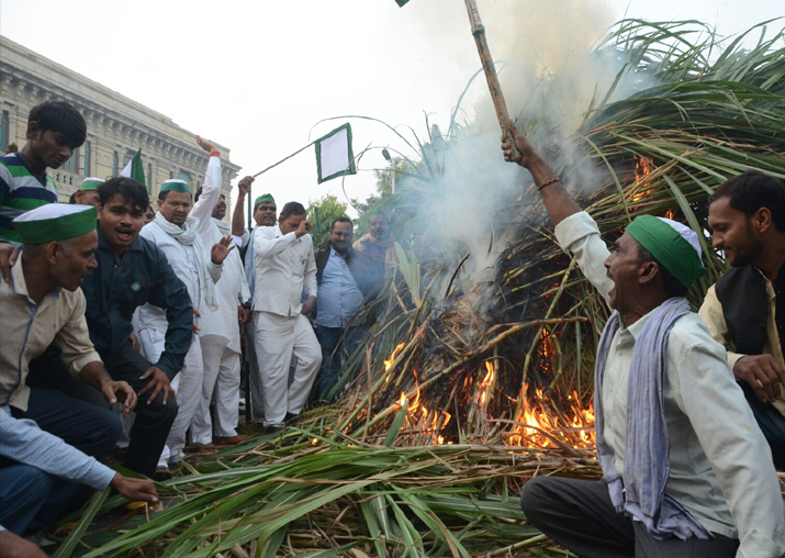 Angry sugarcane farmers burn crop outside UP Assembly