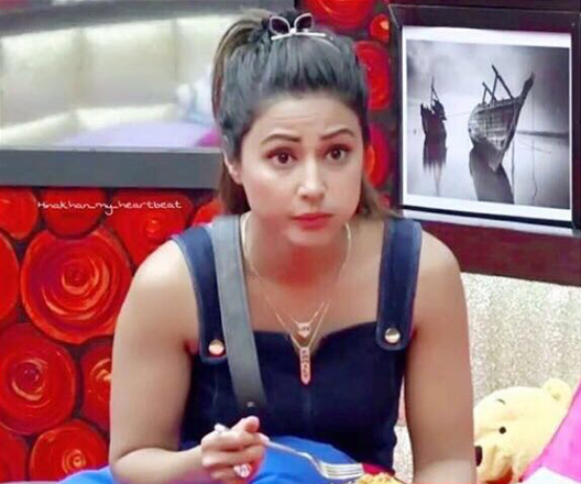 Viral News News And Photos: Bigg Boss 11: Fans Slam Hina Khan After Video Clips Of Her