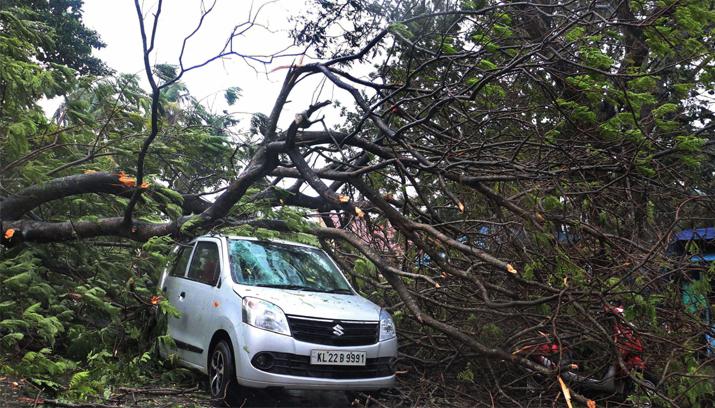 India Tv - Cyclone Ochki: Eight dead as rains lash Tamil Nadu, Kerala; normal life crippled