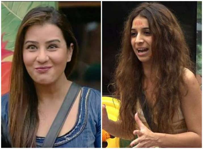Bigg boss 11 evicted contestant Benafsha says sorry to