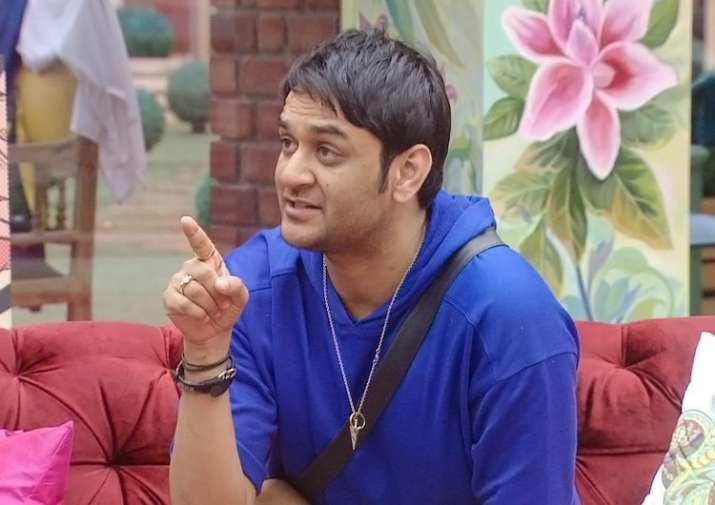 Zareen Khan says Vikas Gupta is her favourite Bigg Boss 11
