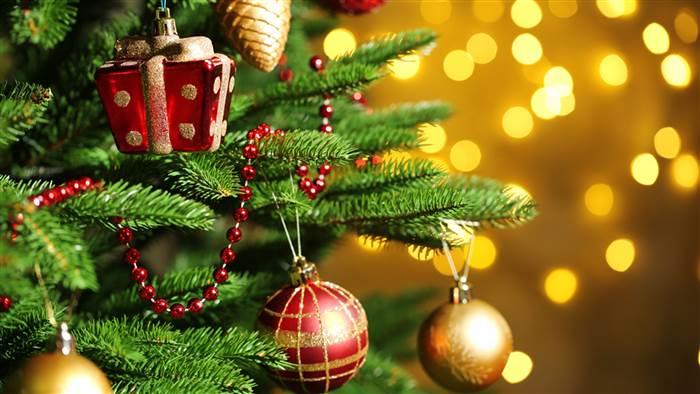 India Tv - Christmas Tree