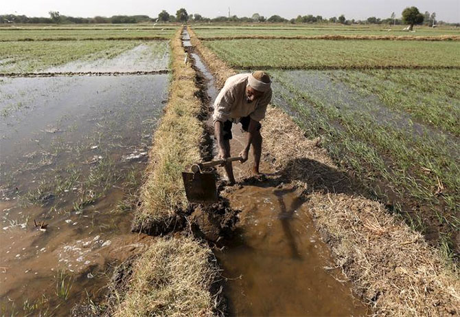 The decline in the number of surface irrigation schemes has