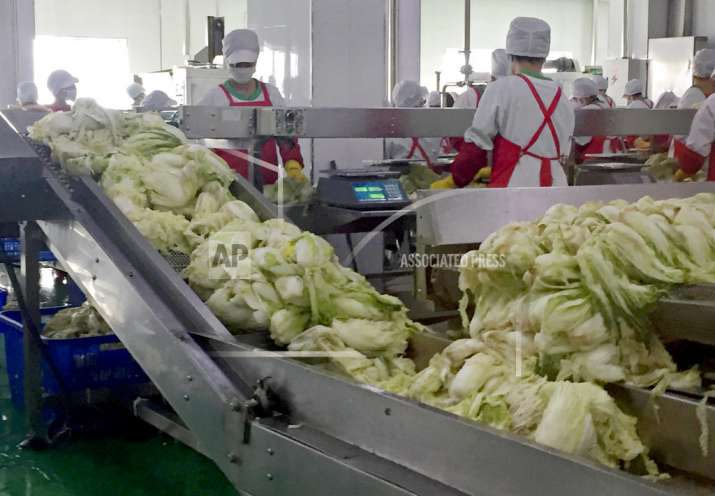 Workers prepare kimchi on the production line at the