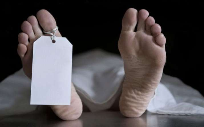 Man from Punjab found dead in Tokyo, kin cry foul, seek