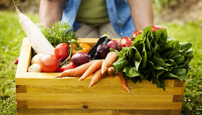 All you need to know about organic foods   Food News – India TV